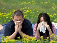 Как узнать аллергический ринит?