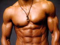 Голландские ученые вырастили искуственные мышцы