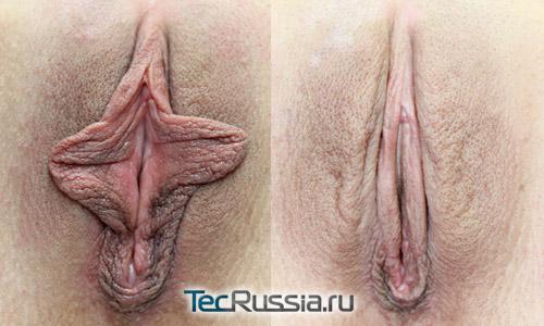 Порно онлайн трансы сайт