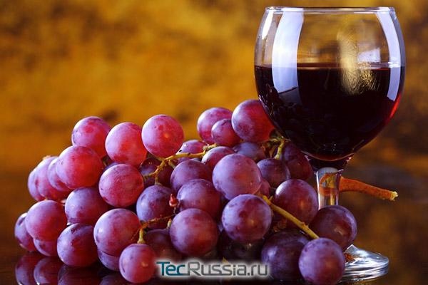 виноград и вино - источник ресвератрола
